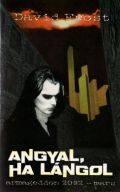 ANGYAL, HA LÁNGOL (antikvár)