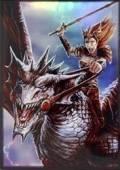 4-PKT PORTFOLIO - Dragon Rider
