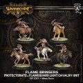 Warmachine - Protectorate of Menoth - Unit - Flame Bringers (5)