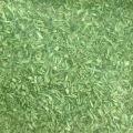 MŰFŰ - világoszöld / FIELD GRASS Light Green