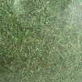 MŰFŰ - középzöld / FIELD GRASS Medium Green