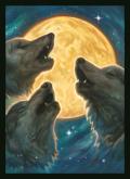 KÁRTYAVÉDŐ / DECK PROTECTORS - 3 Wolf Moon (50)