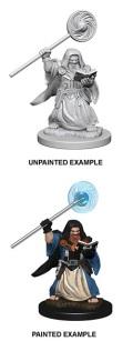 D&D Nolzur's Marvelous Minis - Dwarf Male Wizard 1