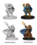 D&D Nolzur's Marvelous Minis - Dwarf Female Wizards (2)