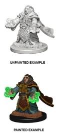 D&D Nolzur's Marvelous Minis - Dwarf Female Cleric 1