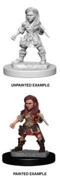 D&D Nolzur's Marvelous Minis - Halfling Female Rogue 1