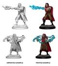 D&D Nolzur's Marvelous Minis - Human Male Sorcerers (2)
