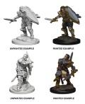 D&D Nolzur's Marvelous Minis - Human Male Paladins (2)