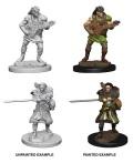 D&D Nolzur's Marvelous Minis - Human Male Bards (2)