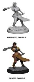 D&D Nolzur's Marvelous Minis - Human Female Monk 2