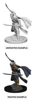 D&D Nolzur's Marvelous Minis - Elf Male Ranger 1