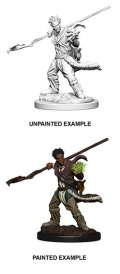 D&D Nolzur's Marvelous Minis - Human Male Druid 2
