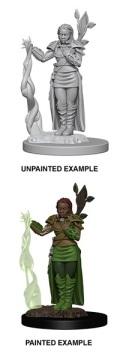 D&D Nolzur's Marvelous Minis - Human Female Druid 1