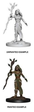 D&D Nolzur's Marvelous Minis - Human Female Druid 2