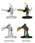 D&D Nolzur's Marvelous Minis - Elf Female Druids (2)
