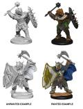 D&D Nolzur's Marvelous Minis - Dragonborn Male Paladins (2)