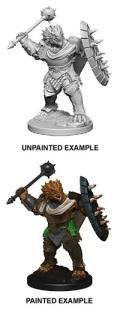 D&D Nolzur's Marvelous Minis - Dragonborn Male Paladin 1