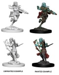 D&D Nolzur's Marvelous Minis - Air Genasi Female Rogues (2)