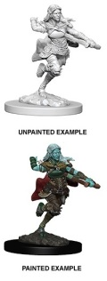 D&D Nolzur's Marvelous Minis - Air Genasi Female Rogue 1