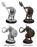 Pathfinder Deep Cuts - Gnolls (2)