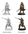 Pathfinder Deep Cuts - Human Male Fighters (2)