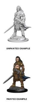 Pathfinder Deep Cuts - Human Male Fighter 1
