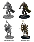 Pathfinder Deep Cuts - Elf Male Fighters (2)