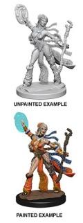 Pathfinder Deep Cuts - Human Female Sorcerer 1