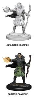 Pathfinder Deep Cuts - Elf Male Sorcerer 2