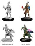 Pathfinder Deep Cuts - Elf Female Sorcerers (2)