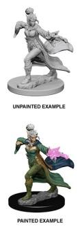 Pathfinder Deep Cuts - Elf Female Sorcerer 2