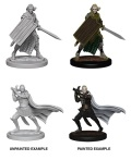 Pathfinder Deep Cuts - Elf Male Paladins (2)