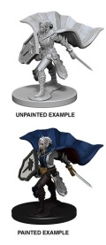 Pathfinder Deep Cuts - Elf Female Paladin 1