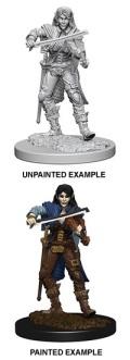 Pathfinder Deep Cuts - Elf Female Bard 2