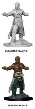 Pathfinder Deep Cuts - Human Male Monk 1