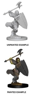 Pathfinder Deep Cuts - Half-Orc Female Barbarian 1
