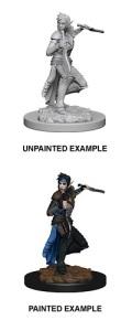 Pathfinder Deep Cuts - Elf Female Rogue 1