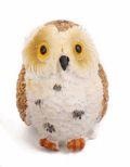 Giant Owl 1