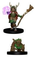 Wardlings - Boy Druid & Tree Creature