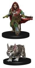 Wardlings - Girl Ranger & Lynx