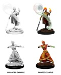 D&D Nolzur's Marvelous Minis - Fire Genasi Female Wizards (2)