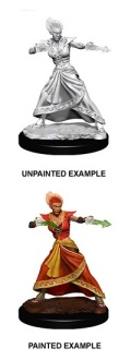 D&D Nolzur's Marvelous Minis - Fire Genasi Female Wizards 2