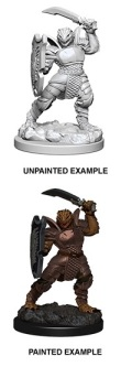 D&D Nolzur's Marvelous Minis - Dragonborn Female Paladin 2