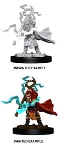 Pathfinder Deep Cuts - Gnome Female Sorcerer 2