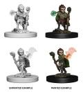Pathfinder Deep Cuts - Gnome Male Druids (2)