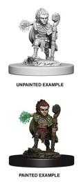 Pathfinder Deep Cuts - Gnome Male Druid 1