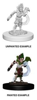 Pathfinder Deep Cuts - Gnome Female Druid 2