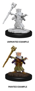 D&D Nolzur's Marvelous Minis - Gnome Male Wizard 1
