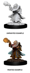 D&D Nolzur's Marvelous Minis - Gnome Male Wizard 2