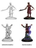 D&D Nolzur's Marvelous Minis - Tiefling Male Warlocks (2)